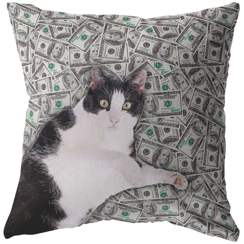 Money Cat Throw Pillow / Pillow Cover / Pillowcase   Funny Cat Meme Home Decor, Funny Cat Lover Gifts